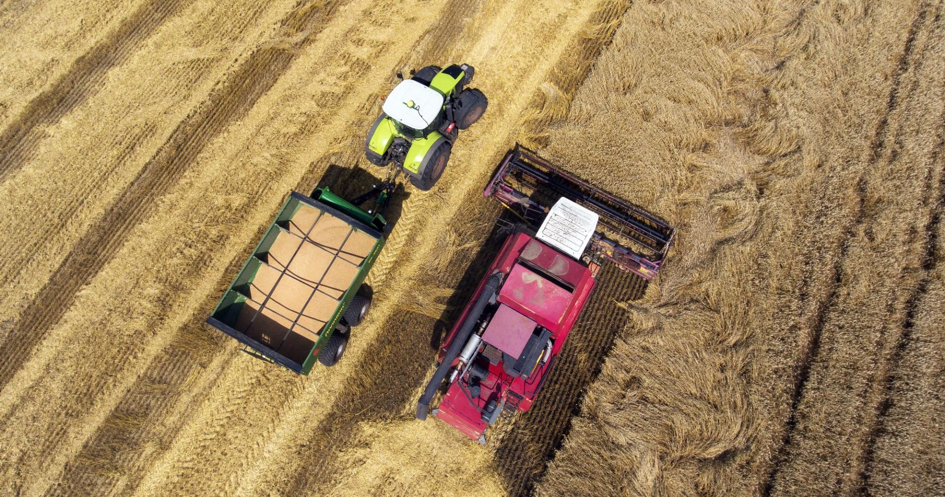 grain-transfer-trailer-25-31-3